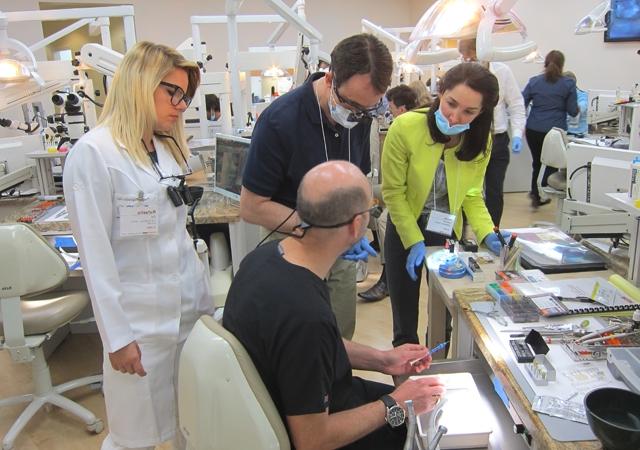 16 participants dental education continuing