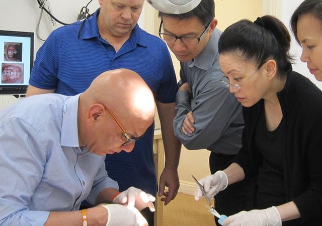 orthodontics program education